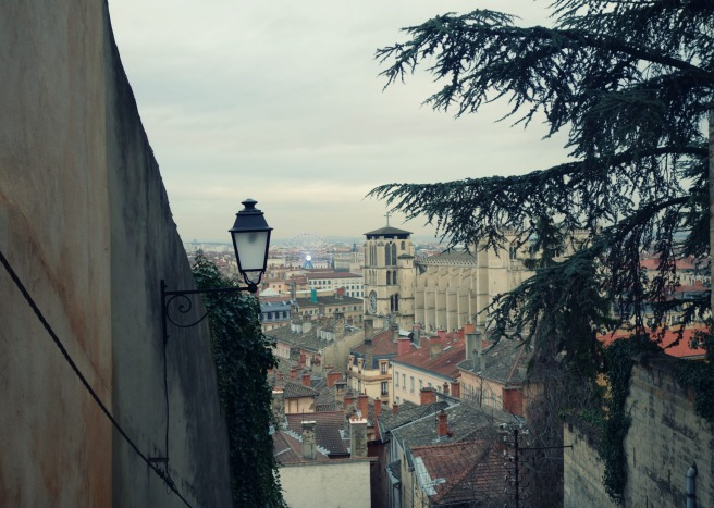 steep view lyon
