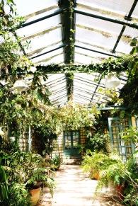 Serre de la Madone in Menton: a city known for its gardens
